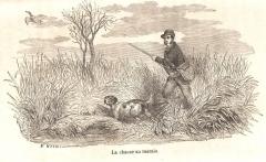chasse au marais