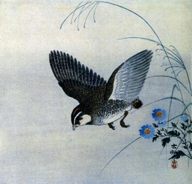 caille en vol, art japonais