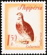 timbre Albanie