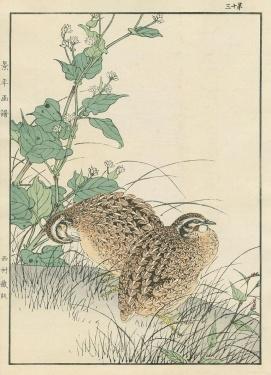 Estampe japonaise realisee en 1891 par Imao Keinen