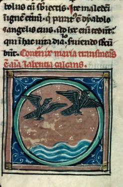 cailles traversant les mers, De Medicina animae