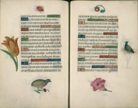 double page extraite de Heures à l usage de Rome