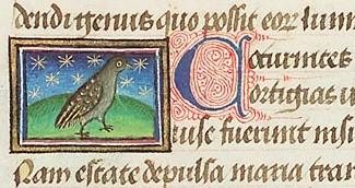 caille extraite bestiarium, 1450