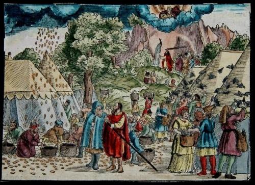Bible Luther , les cailles et la manne