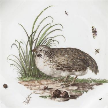 détail assiette creuse caille et insectes