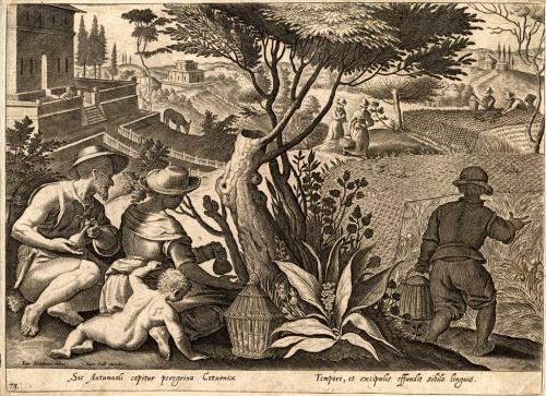 gravure stradanus 1636